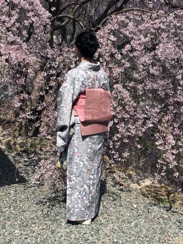 桜の着物姿